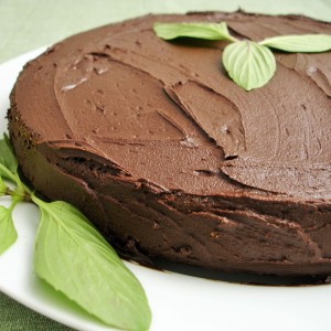 chocolate_mint_cake EDITED - Version 2